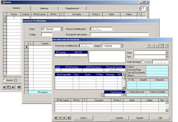Software ERP Gextor Gestión Contabilidad Financiera, diario de contabilidad, asientos predefinidos, introducción de facturas